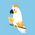 鹦鹉招财贷款app
