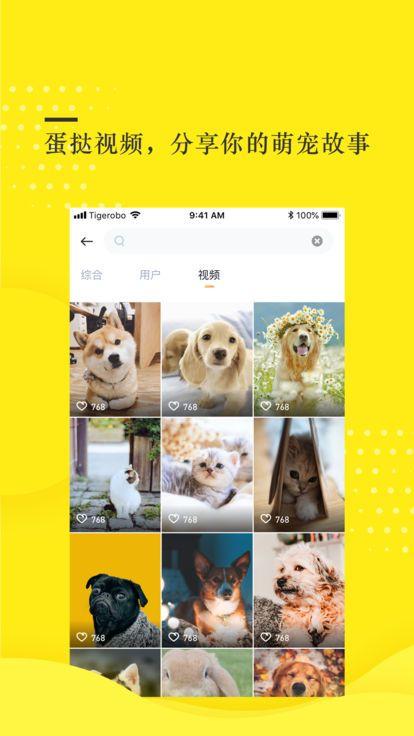 蛋挞视频app图1