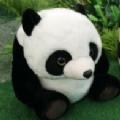 大熊猫认脸APP官方手机版 v1.0