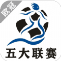 欧冠五大联赛app平台官方下载入口 v1.0