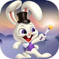 玩魔术的兔子