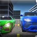真正世界驾驶员安卓版游戏 v1.5.3