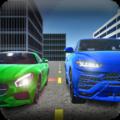 真实世界驾驶员游戏安卓版 v1.5.4