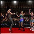女子团体摔跤游戏安卓版 v1.0