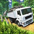 印度货运卡车运输