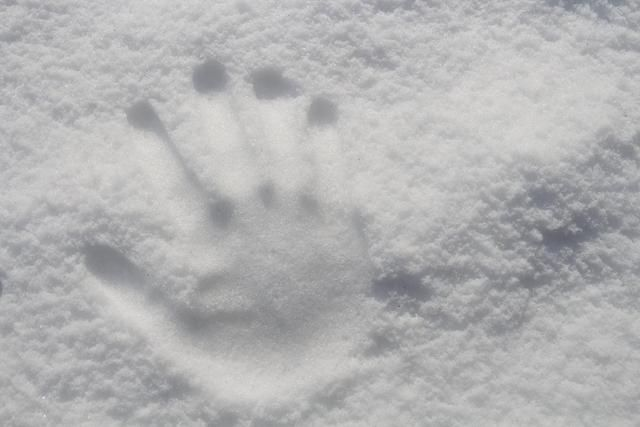 今日小雪怎么样发朋友圈?2020小雪经典文案合集[多图]图片2