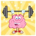 大脑协调测验