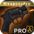 终极武器模拟器Pro