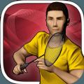 Real Badminton2020免费中文版 v1.3
