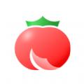 小说番茄酱