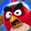 愤怒的小鸟网球官方安卓版 v1.0
