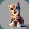 真实小猫3D模拟游戏安卓版 v1.0