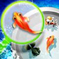 捞金鱼游戏安卓版 v2.8.1