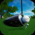 完美挥杆高尔夫游戏安卓版 v1.325