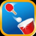 乒乓球冠军游戏安卓版 v1.0