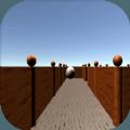 掌上迷宫游戏安卓版 v0.1