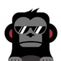 星学院安卓版app v0.0.15