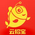 云招宝官网app v1.0