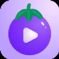 qz999.app官网