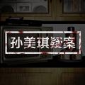 孙美琪疑案兰芝完整版