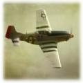 P51D模拟空破解战