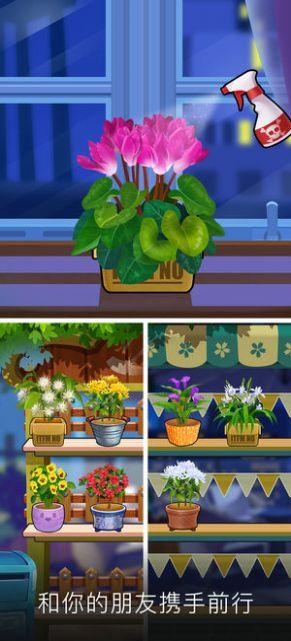 我的花园红包版图2
