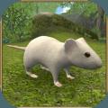 疯狂地鼠3d模拟