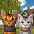 猫模拟器2020破解版