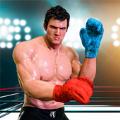 真正的终极拳击比赛安卓版游戏 v1
