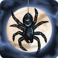 蜘蛛仪式笼罩