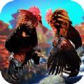 斗鸡PK模拟器