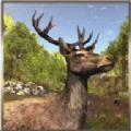 动物猎人丛林狙击手射击