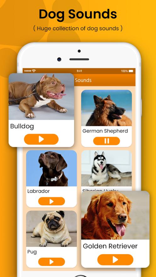 狗训练答题器和噪音app图1