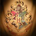 体验哈利波特魔法人生