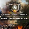 战略思维为自由而战