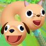 猫和狗3D