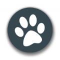 兽音译者在线翻译官网app v1.5