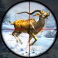 鹿狩猎现场