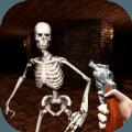 骷髅重生生存射击游戏免费版 v1.0