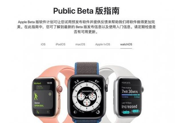 苹果watchOS 8 RC准正式版官方描述文件图片4