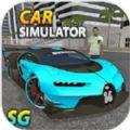 汽车模拟器SG
