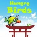 饥饿的鸟游戏