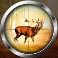 风景猎鹿野生猎人