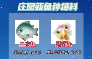 摩尔庄园手游三文鱼在哪钓?三文鱼钓鱼位置介绍[多图]图片2