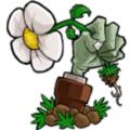 植物大战僵尸(重制版) v1.3.4.3