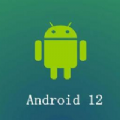 android12 beta5
